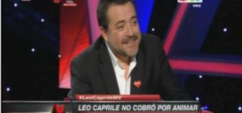 leoleito