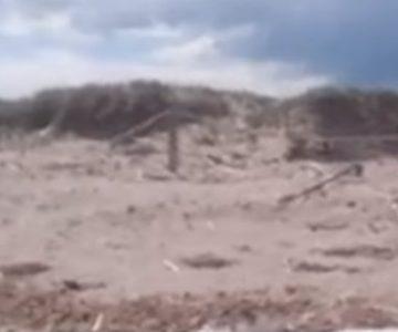 Valiente mujer humilló a hombre depravado en una playa nudista