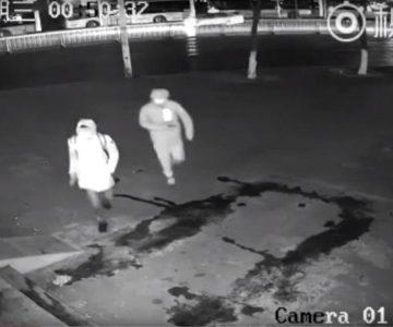 Vídeo: Ladrón noquea sin querer a su compañero con un ladrillo