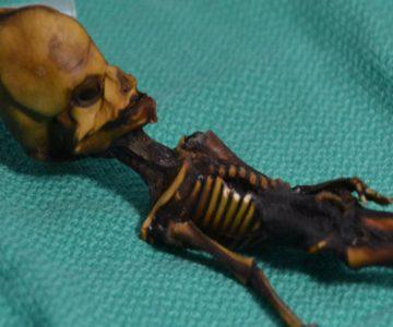 """Tranquilos, no es lo que parece: Descubren de qué trata el """"esqueleto de Atacama"""""""