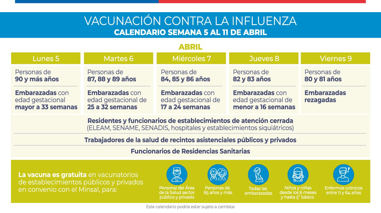 Calendario de vacunación contra la Influenza. (fuente: Minsal)
